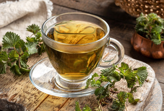 Stinging nettle tea in a glass cup