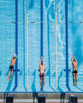 Three Swimmers Diving