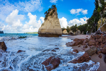Canvas Prints Cathedral Cove Tidal wave in Cathedral Cove