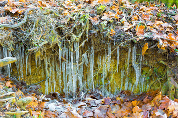 Fototapeta Sople lodu w ziemi obraz