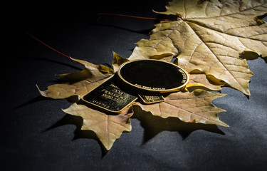 Minted gold bars and coin on a background of yellow maple leaves.
