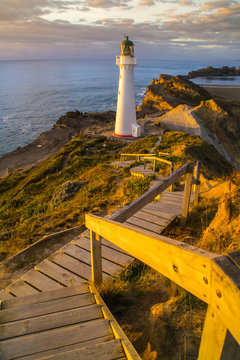 Panoramic scenic landscape view of the Castlepoint lighthouse in sunrise colours, white landmark, tourist popular attraction/destination in North Island, New Zealand.