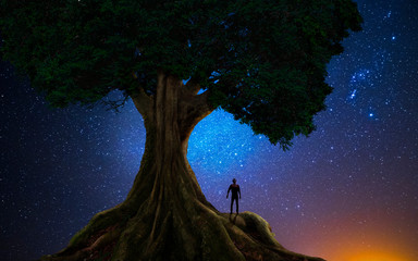 Man under a tree in front of the universe Wall mural