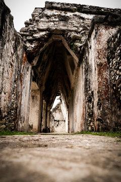 maya ruines in Mexico jungle