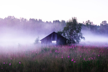 Old abandoned shed in a foggy meadow during a summer sunset in Sweden Fotobehang