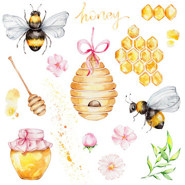 Big set with two bees, honeycomb, jar, beehive, honey spoon, green branch, pink flowers and yellow splash; watercolor hand draw illustration; with white isolated background