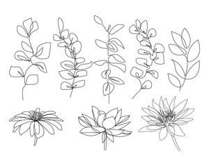 Continuous Line Drawing Set Of Plants Black and White Sketch of Leaves Isolated on White Background. Branch Leaves One Line Illustration. Vector EPS 10.