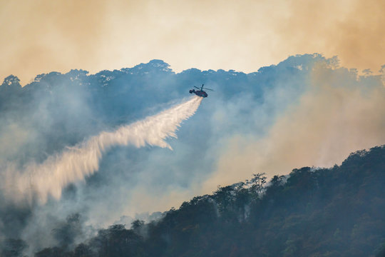 Helicopter dropping water on forest fire