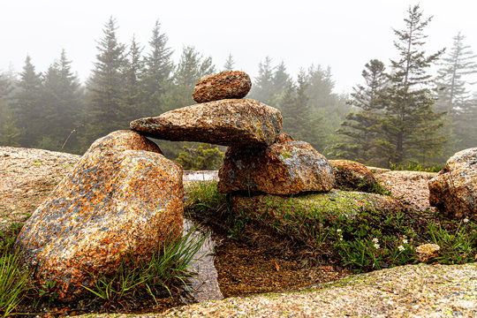Rock formation along the hiking trails in Acadia National Park, Maine