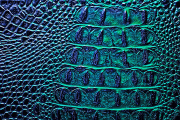 Wall Mural - Dark alligator patterned background. Reptile skin.
