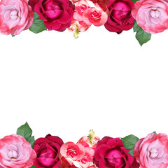 Fototapete - Beautiful floral pattern of begonias and roses. Isolated