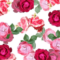 Wall Mural - Beautiful floral background of begonias and roses. Isolated