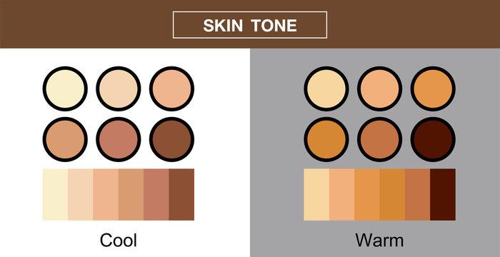 skin tone, color palette set , vector design