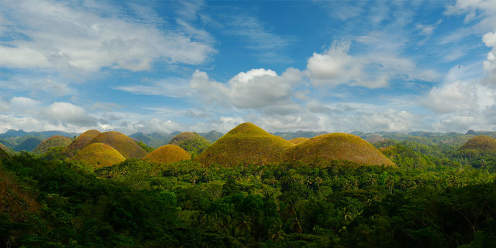Chocolate hills landscape in Bohol island -Philippines