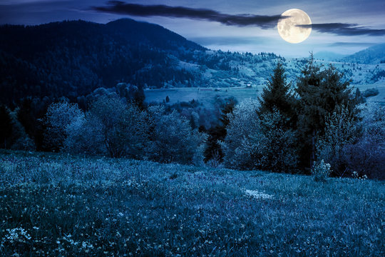 beautiful rural landscape in mountains at night. countryside scenery on an overcast weather in spring in full moon light
