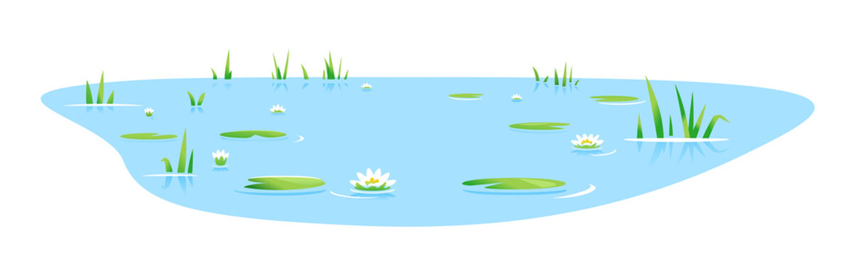Small blue decorative pond with bulrush plants and white water lilies isolated, lake plants nature landscape fishing place, decorative pond in landscape design garden