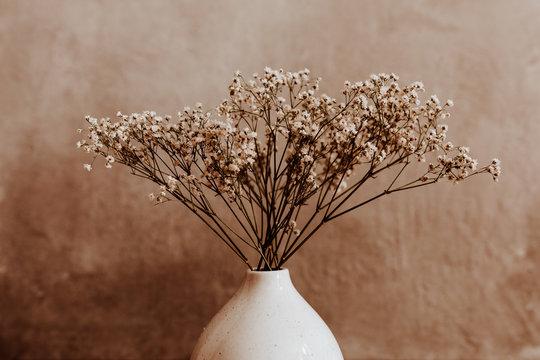 White wild dried flower in white ceramic vase closeup on brown background