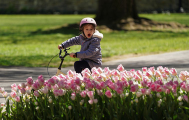 A little girl admires flowers at Georgetown University in Washington