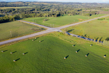 Aerial view rolled hay bales in sunny idyllic rural field