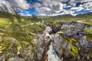 Wall Mural - Waterfall in Wild river in Hardangervidda