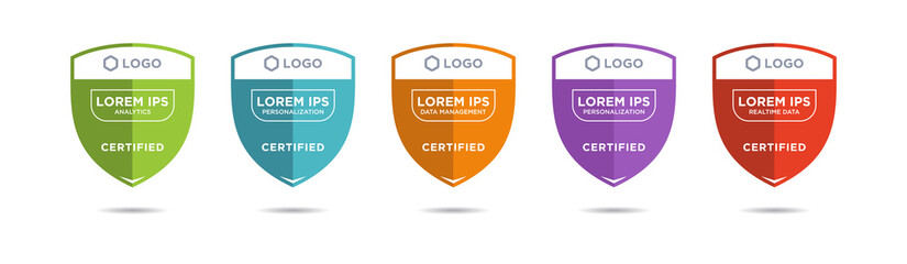 Set of company training badge certificates to determine based on criteria. Vector illustration certified design.