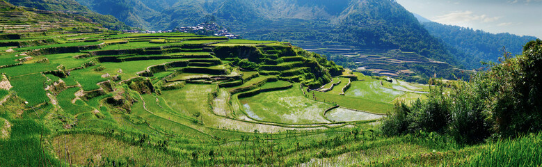 rice field terraces in the area of banaue,in Philippines  Fototapete