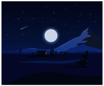 Landscape Desert Vector Illustraion. Desert Vector art.  Night vector