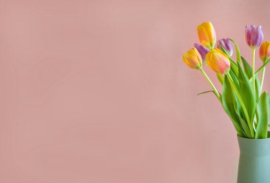 Pastel green vase of yellow, red and purple tulips on pink background , greeting card, mother's day or birthday card