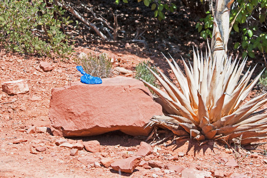 A bag of dog poop is left on a rock next to a hiking trail in Sedona, Arizona.