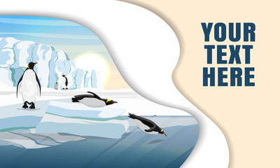 Landing page template with multi-level shadows and the image of penguins standing on the snow and diving into the water from the ice. Realistic vector