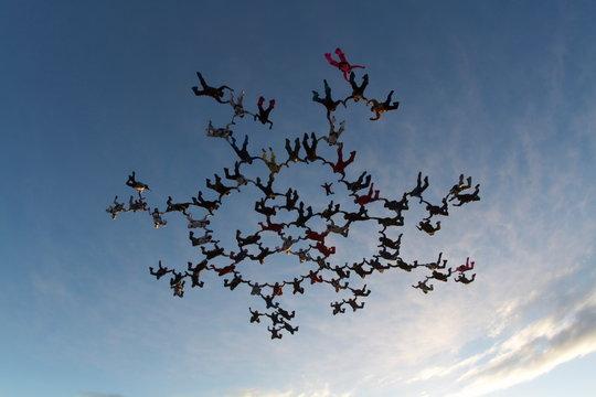 Big skydiving formation at sunset sky