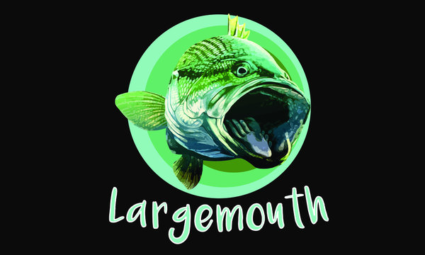 Largemouth Bass Fish Smallmouth Striped Bass Fishing Artwork  Graphic Drawing Circles on black background