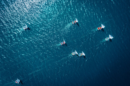 Small sailing boats on the lake during the competition