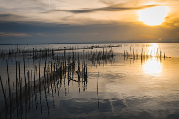 Sunset in the Albufera of Valencia.