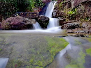 Poster Bos rivier waterfall in the forest