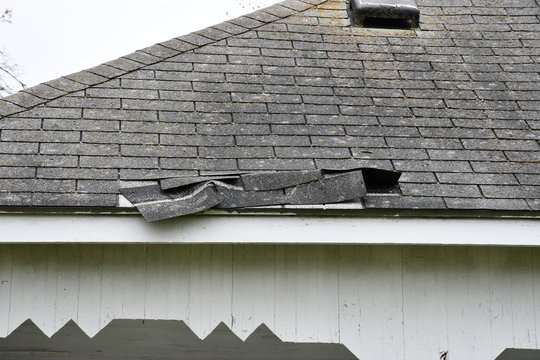 Shingle Damage