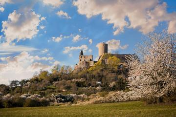 Burg Gleiberg Mittelhessen