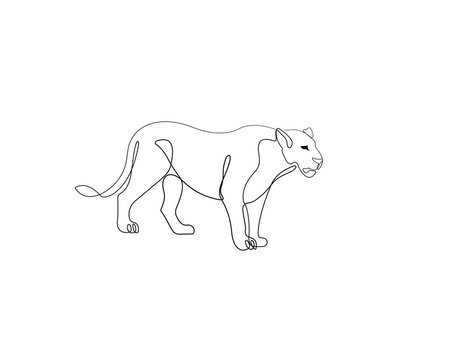 Lioness one line drawing