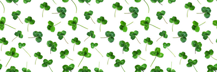 Fototapete - Green clover, the symbol of the holiday St. patrick's day. Seamless pattern of clover leaves isolated on white background, top view, flat lay.