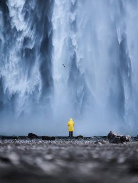 Tourist on the Skogafoss waterfall background. Travelling on Iceland. Tourist in the famouns place in Iceland. Travel - image
