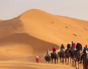 Spoed Fotobehang Kameel Camels caravan in the dessert of Sahara with beautiful dunes in background. Morocco