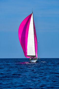Crimson spinnaker boat