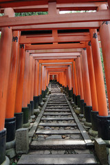 Rows of Torii Gate lasted Quite Long Distance