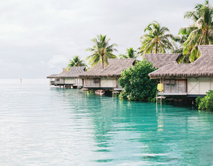 Film photo in Tahiti with blue and turquoise water and ocean and bright colored flowers