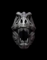 Dinosaur skull isolated on black background