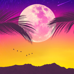 Wall Mural - Silhouette palm tree with bird flying on sunset sky and full moon star abstract background. Copy space of summer vacation and travel adventure concept.