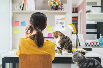 Young Asian woman working from home due to coronavirus covid-19, lifestyle working and playing with her cute cats, Work from home concept