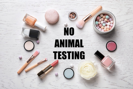 Cosmetic products and text NO ANIMAL TESTING on white wooden background, flat lay