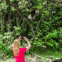 Woman takes pictures of monkeys, no face visible