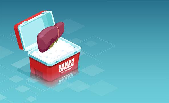 Liver transplant of a donor organ concept